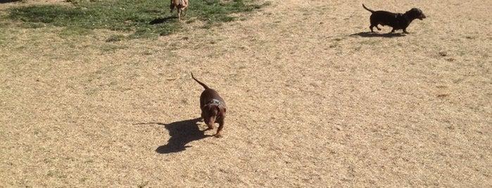 Brandi Fenton Dog Park is one of Dog Friendly.