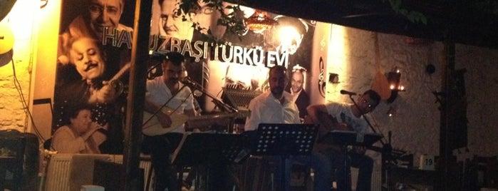 Havuzbaşı Türkü Evi is one of mekan.