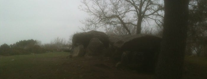 Dolmen De Mané Bras is one of La France.
