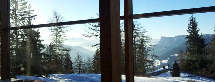 Vigilius Mountain Resort is one of Design Hotels.