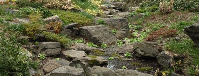 The New York Botanical Garden is one of Nueva York.