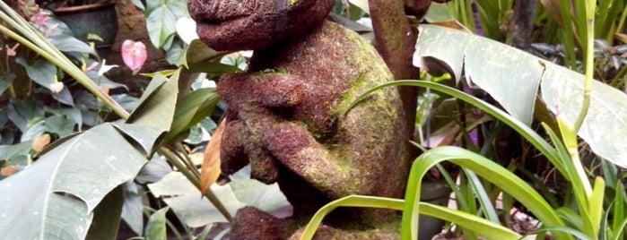 Agro-Oriente is one of Emilio'nun Beğendiği Mekanlar.
