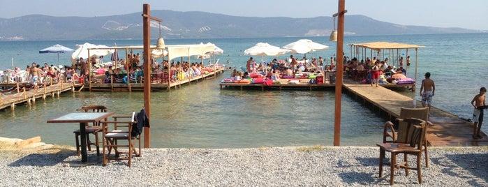 Gezgin Cafe & Beach is one of สถานที่ที่ Figen ถูกใจ.