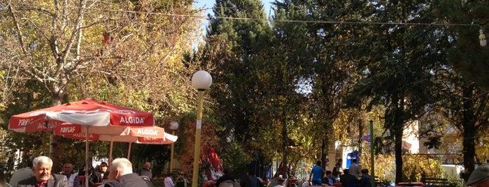 Yunus Emre Parkı is one of Orte, die Burak gefallen.