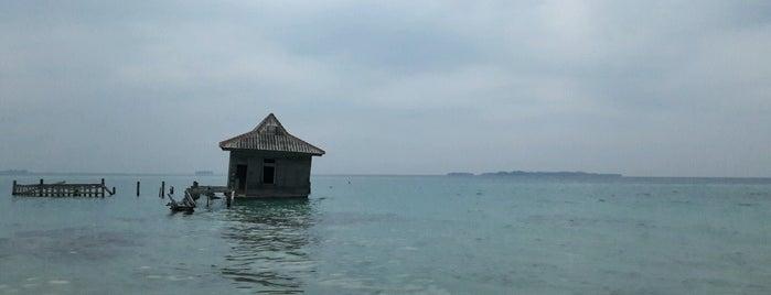 Semak Daun Island is one of Janさんのお気に入りスポット.