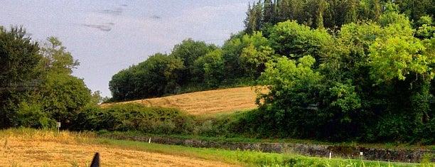 San Casciano in Val Di Pesa is one of Comuni del Chianti Classico.
