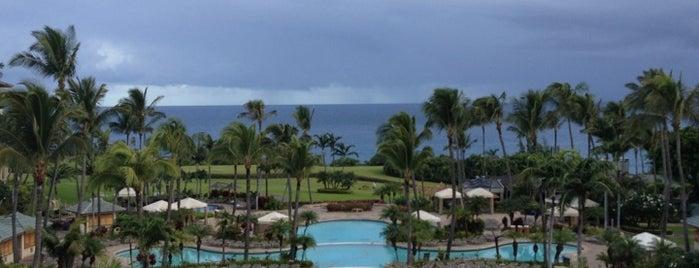 The Ritz-Carlton, Kapalua is one of Best Maui Resorts/Hotels.