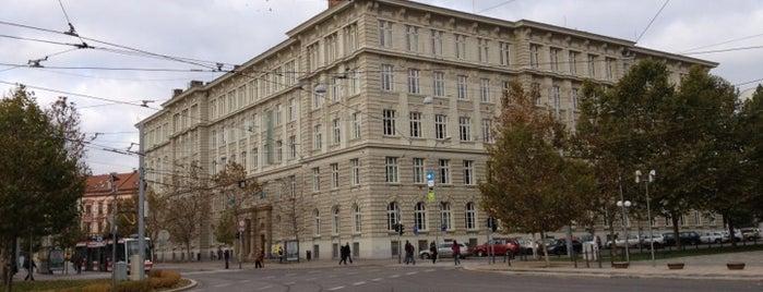 Fakulta sociálních studií Masarykovy univerzity is one of oblíbené.