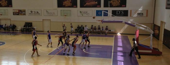 Hacettepe Üniversitesi Spor Salonu is one of Locais curtidos por Mufide.