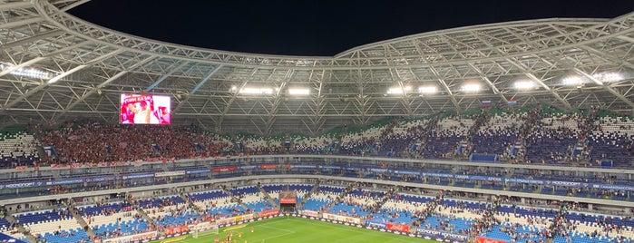 Samara Arena is one of Lieux qui ont plu à Виталий.
