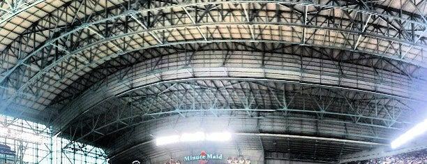 ミニッツ・メイド・パーク is one of MLB parks.