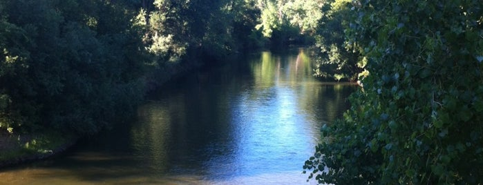 Stanislaus River is one of Knights Ferry.