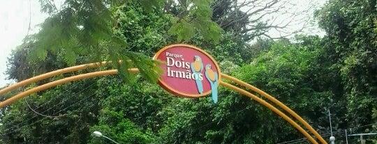 Parque Dois Irmãos is one of Turismo - Recife.