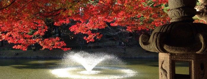 東公園 is one of FAVORITE PLACE.