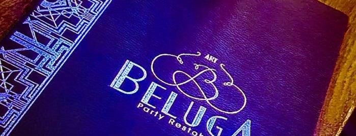 Beluga is one of Posti che sono piaciuti a Stevi.
