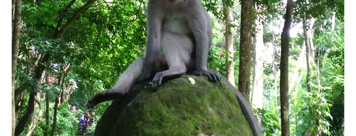 Sacred Monkey Forest Sanctuary is one of Bali.