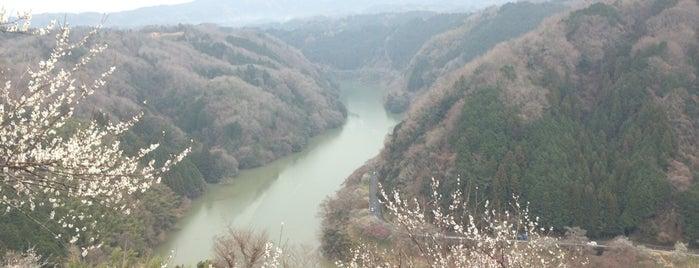 月ヶ瀬梅林 is one of アウトドア&景観スポット.
