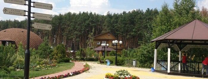 Александр is one of Tempat yang Disukai Pavel.