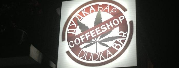 Dudka Bar is one of Koh Pha Ngan.