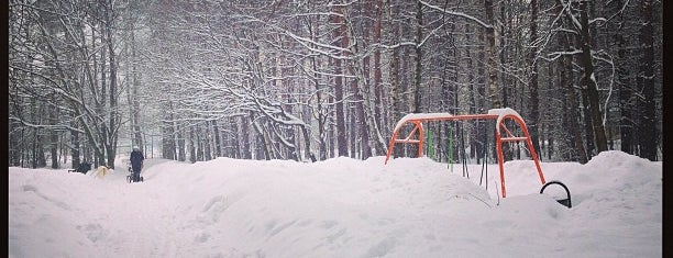 Лес Зеленоград is one of Tempat yang Disukai Anna.