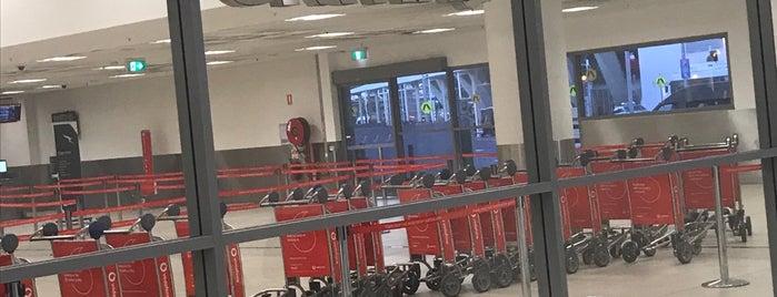 Qantas Domestic Transfer Lounge is one of สถานที่ที่ Rick ถูกใจ.