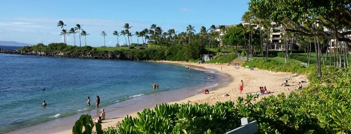 Kapalua Bay Beach is one of Orte, die 🚡 Chris gefallen.