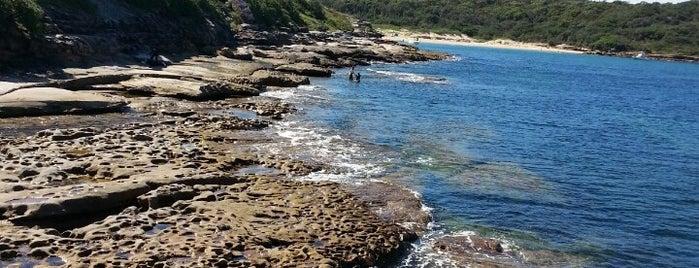 La Perouse is one of Australia - Sydney.