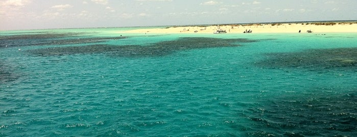 Great Barrier Reef is one of World Heritage Sites!!!.
