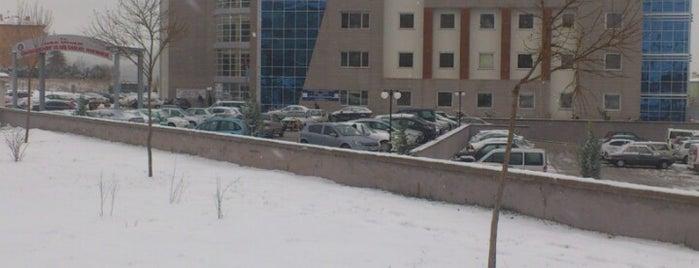 Eskişehir Ağız ve Diş Sağlığı Hastanesi is one of Orte, die OsmanGazi gefallen.