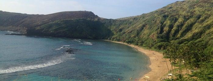 Hanauma Bay Snorkel & Gifts is one of Hawaii List.