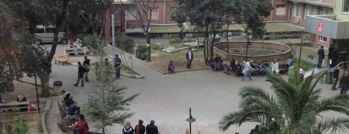 Haseki Eğitim ve Araştırma Hastanesi is one of Posti che sono piaciuti a Eser Ozan.