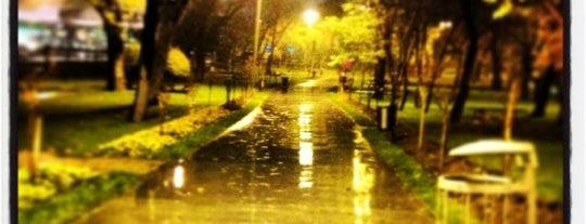 Millet Parkı is one of benim.