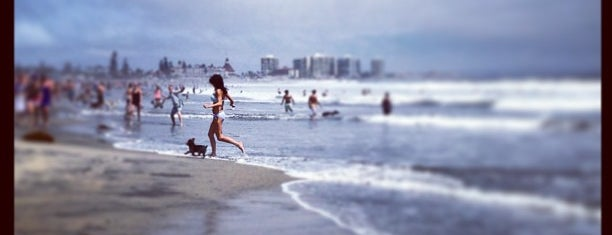 Dog Beach (Coronado) is one of Tempat yang Disimpan Daniele.