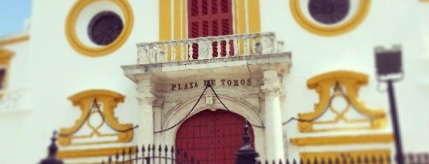 Plaza de Toros de la Maestranza is one of Cosas que ver en Sevilla.
