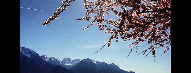 Montreux Lake is one of Winda'nın Beğendiği Mekanlar.