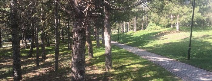 Park Sitesi Yürüyüş Yolu is one of Lugares favoritos de Çiğdem.