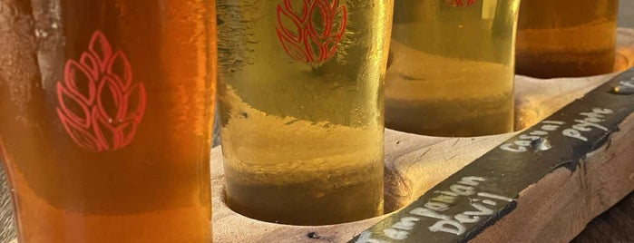 Fireforge Crafted Beer is one of Greenville.