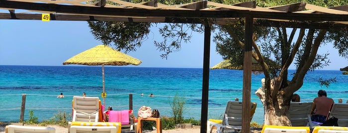 Bar Selona Beach Club is one of Elifさんのお気に入りスポット.