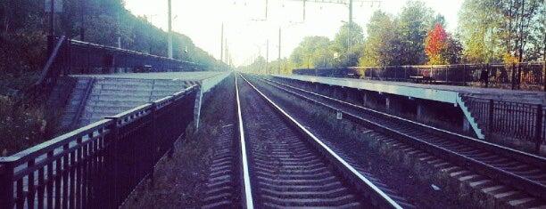 Ж/д станция «Стрельна» is one of Alexandra Zankevich ✨ : понравившиеся места.
