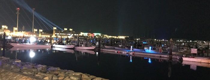 Alto Mar is one of Sea food Dubai.