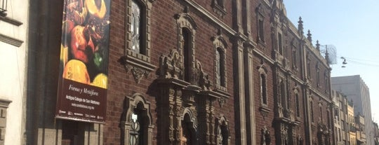 Antiguo Colegio de San Ildefonso is one of (MEX).