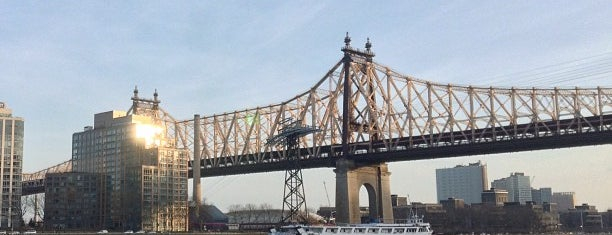 Roosevelt Island is one of Bronx & Manhattan Neighborhoods.