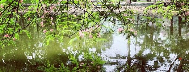Vườn Bách Thảo (Botanical Gardens) is one of Hanoi.