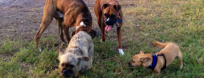 Coral Springs Dog Park is one of Locais salvos de Wendy.