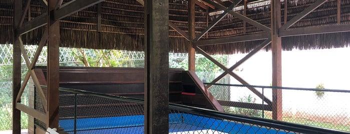 Sociedade Alphaville Residencial 11 (SAR 11) is one of Tempat yang Disukai Rodrigo.