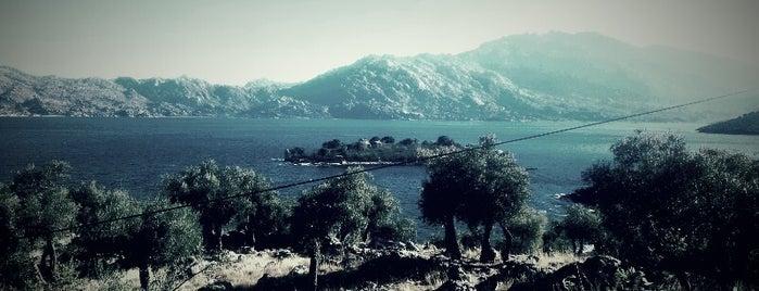 Bafa Gölü Seyir Terası 1 is one of 10 MEYHANELER.