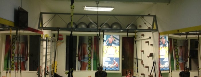 TRX suspension Training is one of Adicta a....