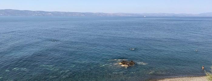 Golden beach is one of Zeynep'in Beğendiği Mekanlar.