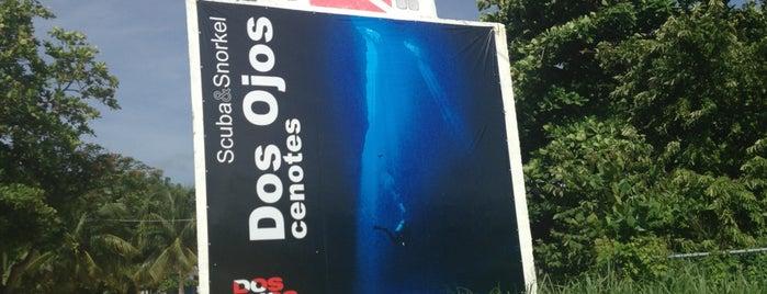 Dos Ojos Scuba Dive Shop is one of Tempat yang Disimpan Oscar.