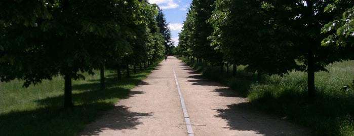 Parco Gustavo Colonnetti is one of Best Park in Turin.